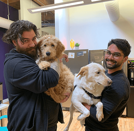 bounteous employees with pets