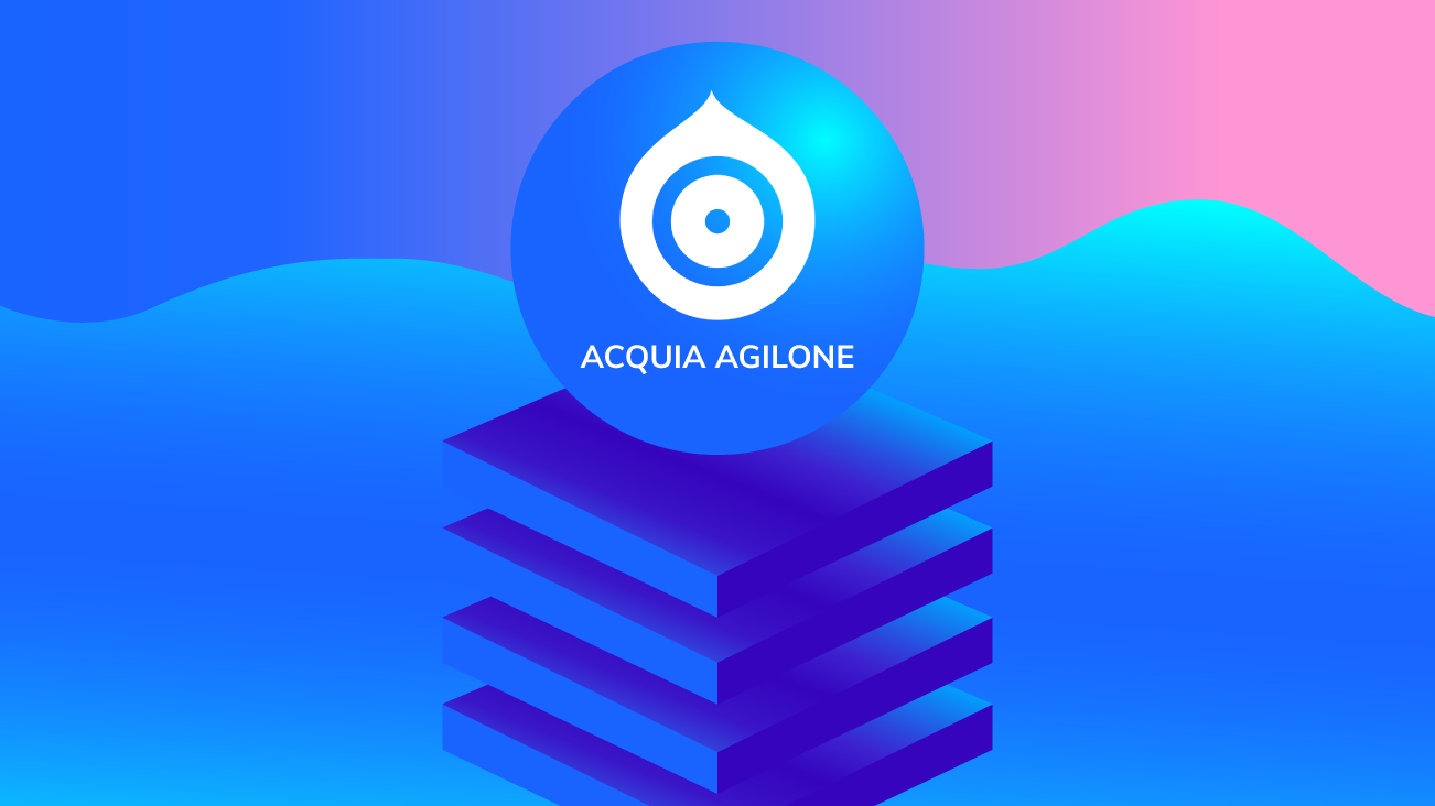 AgilOne: A Pioneer of the Customer Data Platform blog image