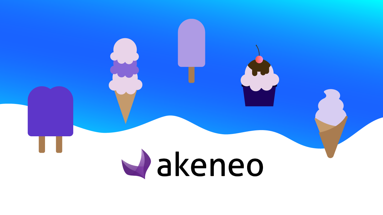 Which Flavour of Akeneo is Right for You? Enterprise Versus Community Edition image