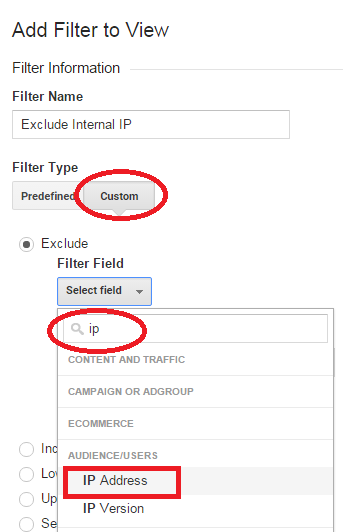 IP Address Field
