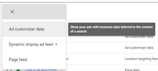 AdWords Ad Customizer